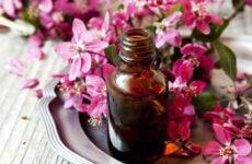 Эфирное масло герани — свойства и применение