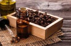 Польза и вред эфирного масла гвоздики