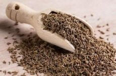Зира (кумин) — специя с экзотическим ароматом