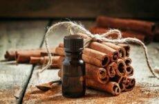 Польза эфирного масла корицы