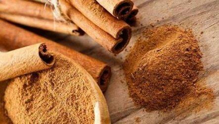 Корица — ароматная пряность для здоровья