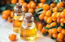 Целебные свойства масла облепихи