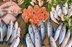 Самая полезная рыба — ТОП 10