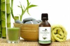 Лечебные свойства эвкалиптового масла