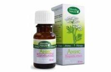 Польза и вред эфирного масла аниса