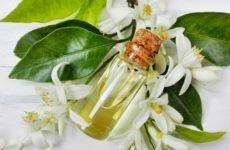 Польза эфирного масла нероли
