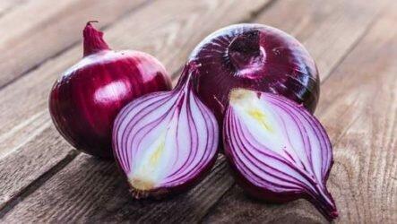 Польза и вред красного лука для здоровья